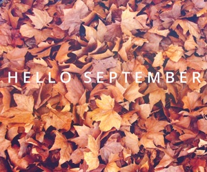 autumn, pattern, and cute image
