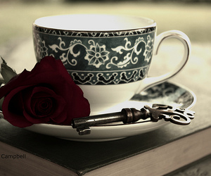 book, rose, and key image