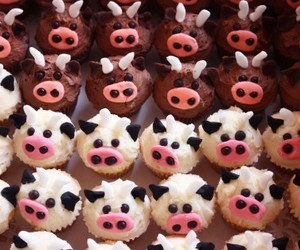 cow, cows, and cupcakes image