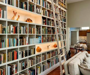 bookcase and books image