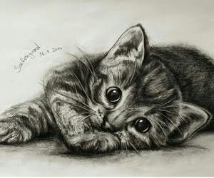 art, black and white, and cat image