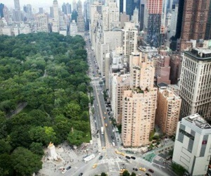 beautiful, Central Park, and new york image