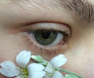 flowers, aesthetic, and eye image