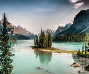 canada, nature, and summer image