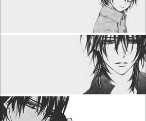 couple, manga, and vampire knight image