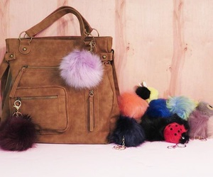 accessories, bags, and bugs image