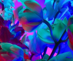flowers, neon, and blue image