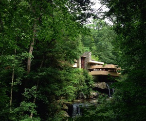 architecture, forest, and nature image