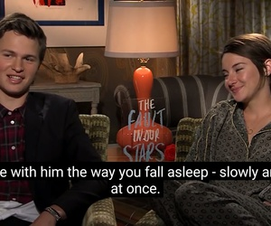 tfios, love, and shailene wood image