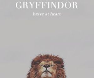 brave, gryffindor, and harry potter image