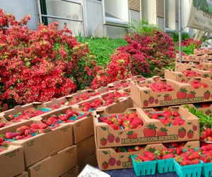 farmers market, food, and fruit image