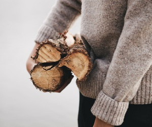 sweater, autumn, and wood image