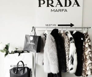 black and white, cool, and Prada image