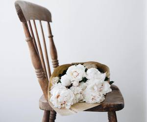 flowers, chair, and photography image