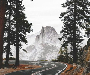 mountains, forest, and road image