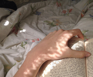 bed, morning, and reading image