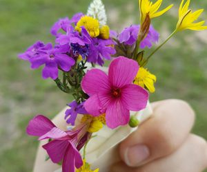 bouquet, flowers, and violet image