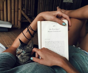beautiful, book, and cute image