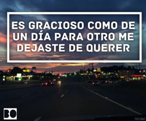 adios, sarcasmo, and vida image