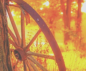 autumn, wheel, and bright pastel image