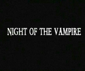 black, night, and vampire image