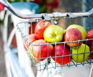 apples, autumn, and bike image