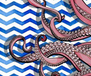 octopus and wallpaper image
