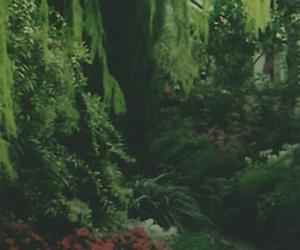 wallpaper, bosque, and fondo image