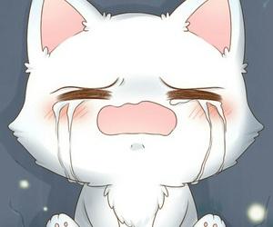 cat, cute, and sad image