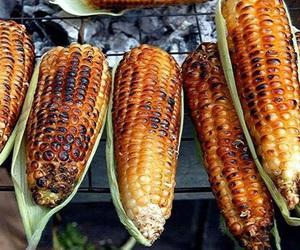 food and corn image