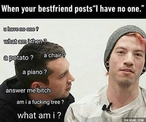 best friend, friendship, and funny image