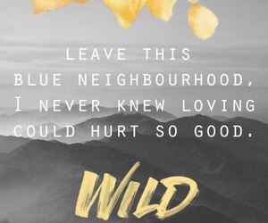troye sivan, wild, and Lyrics image