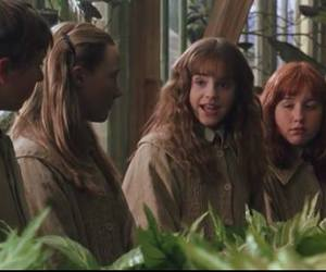 emma watson, harry potter, and Harry Potter and the Chamber of Secrets image