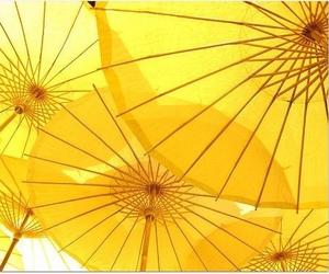 yellow, aesthetic, and umbrella image