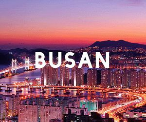 busan, korea, and south korea image