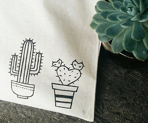 aesthetic, cactus, and plant image