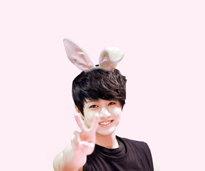 bunny, kpop, and pastel image