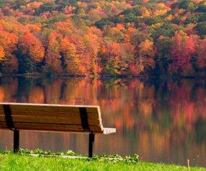 autumn image