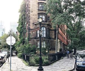 East Village, green, and new york image