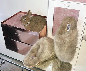 bunny, girly, and faux slippers image