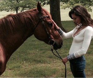 phoebe tonkin, The Originals, and horse image