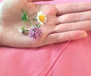 denim, flower, and pink image
