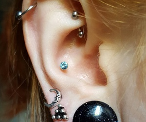conch, helix, and lobe image