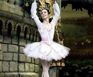 ballet, pink, and sleeping beauty image