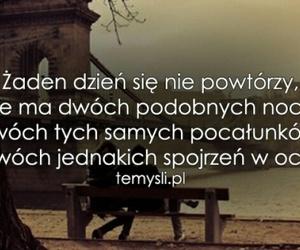 polska, cytaty, and wisława szymborska image