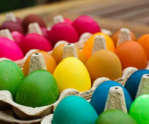 colors, eggs, and rainbow image