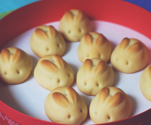 bunny, cute, and food image