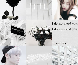 aesthetic, moodboard, and otp image