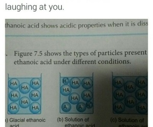 chemistry, funny, and haha image