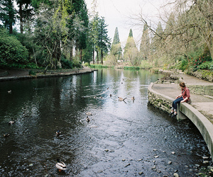 film, water, and rhododendron gardens image